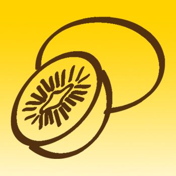 Kiwi Fruit Iron on Transfer