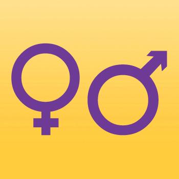 Male Female Symbol Iron On Transfer
