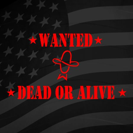 Wanted Dead or Alive Iron on Transfer
