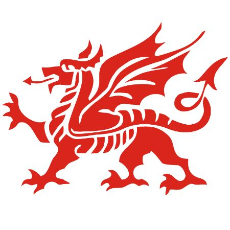 Welsh Dragon Iron on Transfer