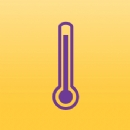 Thermometer Hot Iron on Transfer